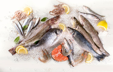 Poster Vis Fresh fish