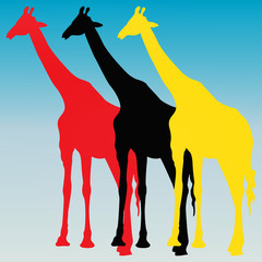 Girafes pop art