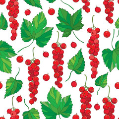 Vector seamless pattern with outline Red currant berry bunch and green leaves on the white background. Fruit background with Redcurrant and leaf in contour style for summer design.