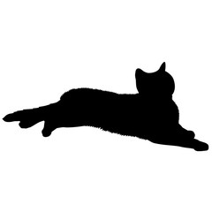 American Shorthair Cat Silhouette Vector Graphics