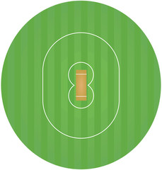 Cricket field. vector illustration