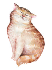Watercolor cute isolated cat ilustration. Love cartoon cats character for valentine's card. Nursary art design.