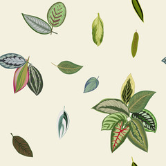 Tropical print. Seamless pattern. Vintage organic leaves.