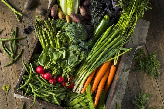 Raw Organic Spring Farmers Market Box