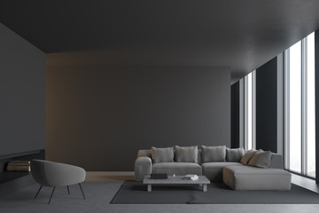 Gray living room interior
