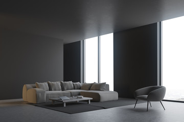 Gray living room corner
