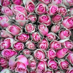 Blumenstrauß mit rosa Rosen zum Valentinstag