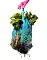 Glove hand holding mesh bag of vegetables