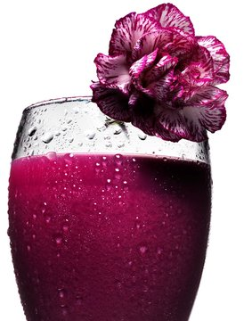 Close up of cocktail glass with pink carnation garnish