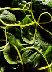 Close-up green spinach leaves
