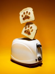 Toasted bread slices with paw print patterns popping out of toaster
