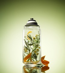 Jar of chamomile flowers in liquid