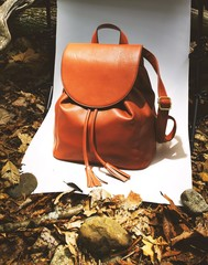 Orange purse on backdrop with leaves