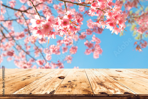 Wall mural Top of wood table empty ready for your product and food display or montage with pink cherry blossom flower (sakura) on sky background in spring season.