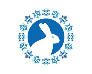 snow flake bunny hare rabbit fauna image