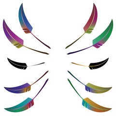 Set of 10 colorful feathers