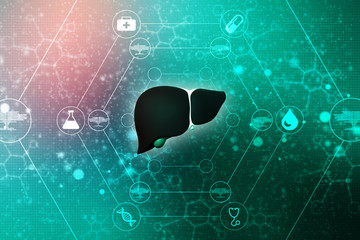 Realistic human liver 3d illustration