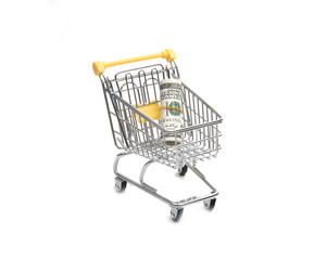 cart with money isolated on the white