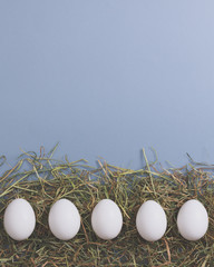 White eggs is laying in row on hay, with colour paper for your text.