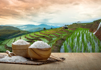 Jasmine rice and steamed rice in wooden bowl with the chopsticks on the wooden table with the plantation rice at sunset