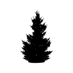 Silhouette of a Christmas tree