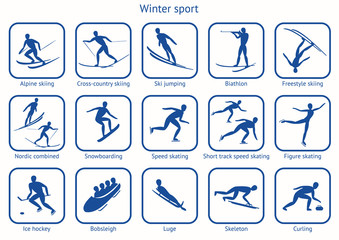 Winter sport and game.