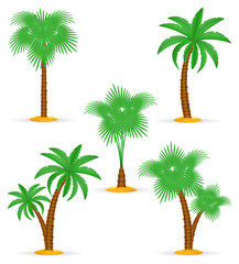 palm tree tropical stock vector illustration