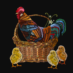 Embroidery rooster  and chickens in a basket. Classical embroidery beautiful yellow chickens and rooster. Template for clothes, textiles, t-shirt design