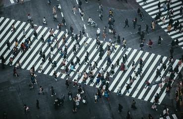 Fototapeta premium Msza ludzi przechodzących przez ulicę w Tokio