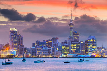 Aluminium Prints New Zealand Auckland. Cityscape image of Auckland skyline, New Zealand during sunset.