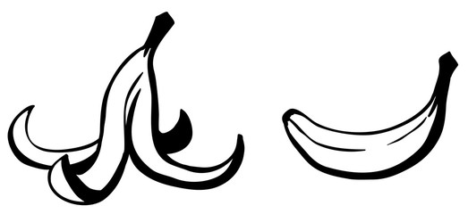Banana Peel Cartoon