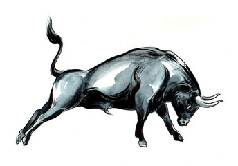 Fighting black bull. Watercolor sketch