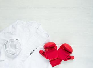 Karate, Judo, TaeKwonDo uniform and gloves on on white background