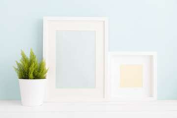 Two photo frames and a plant. Modern interior, minimal mock up.