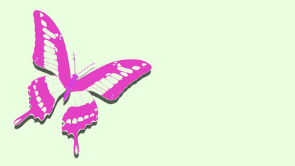pink butterfly on the album sheet