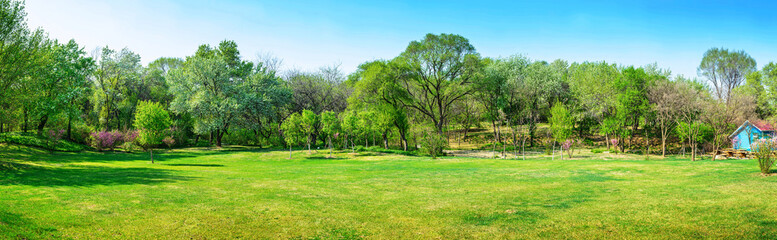 Park in early spring. Located in Shenyang Botanical Garden, Shenyang, Liaoning, China.	 Fototapete