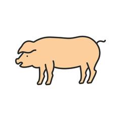 Pig color icon
