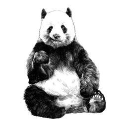 Panda sitting smiling figure in full-length sketch vector graphics monochrome