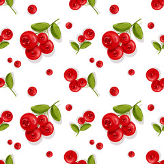 Cranberry..Seamless pattern.