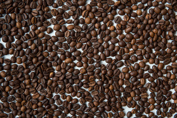 Coffee beans on a white background top view
