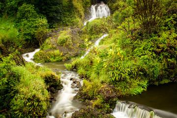 Wasserfall am Hana Highway bei Hana auf Maui, Hawaii, USA.