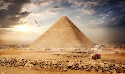 Big bird over pyramids
