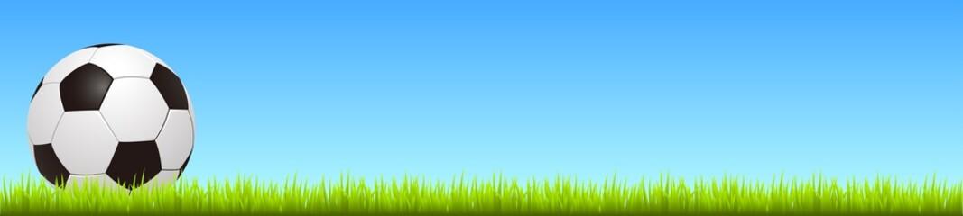 Soccer ball on grass– stock vector