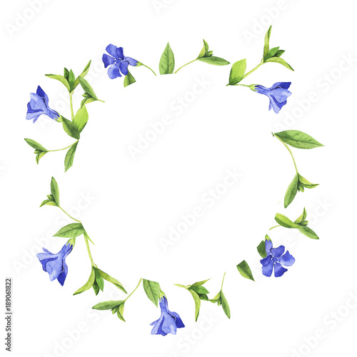 Blue bell flowers laurel with green leaves on white background blue bell flowers laurel with green leaves on white background wedding design greeting card mightylinksfo