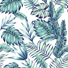 blue jungle white background