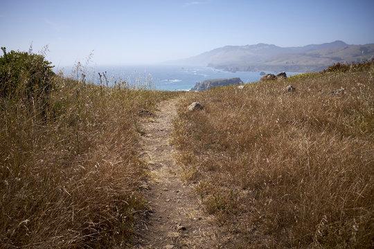 Bodega Bay Coastline Trail