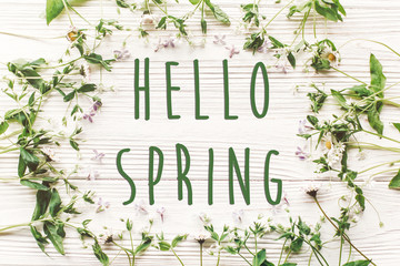 hello spring text sign on fresh daisy lilac flowers and green herbs frame on white wooden rustic background top view. happy earth day. spring flat lay. greeting card.