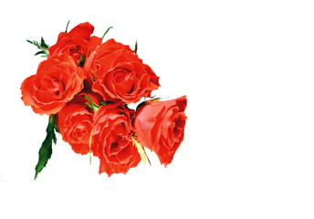 flowers wall background with amazing roses, bouquet