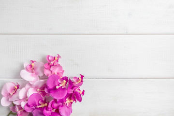 Artificial orchids on white wooden background.