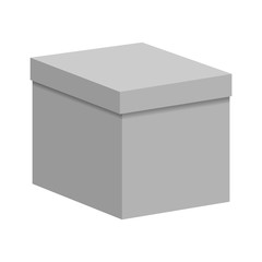 Blank paper or cardboard box